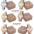 Relógios Femininos Mondaine com Pulseira Vários Modelos