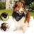 Lenço para cachorro – vários modelos